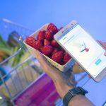 「SCiO」どんなイチゴが甘く、どのくらい大きいか分析