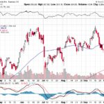 Tesla, Inc.【TSLA】投資情報: 2017年10月12日