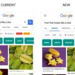 Googleのイメージ検索は、モバイル検索でキャプションを表示できるように!