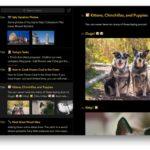 Bearアプリがメジャーアップデート!よりインテリジェントなタグ付け、検索機能などを追加